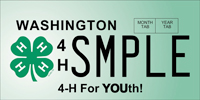 The new 4-H license plate will help support programs for youth.