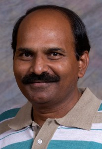 Naidu A. Rayapati, asst. professor/grape virologist, Department of Plant Pathology, WSU Prosser Research & Extension Center.