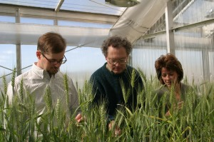A serendipitous discovery. WSU graduate student Jamie Baley, USDA-ARS researcher Timothy Paulitz, and WSU wheat breeder Kim Kidwell, discovered that glyphosate, sold under various trade names including Roundup, is effective in suppressing Asion soy rust. Publication of a patent application is imminent.
