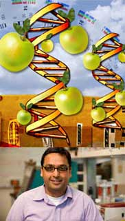 Amit Dhingra talks about the fruit of the future at the next Innovators lecture, Aug. 27