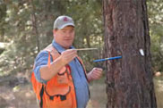 Andy Perleberg, Forestry Extension Educator