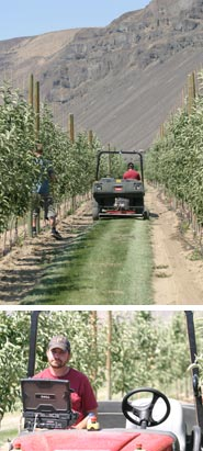 A spin in the orchard: the Autonomous Prime Mover needs no driver to find its way up and down orchard rows.