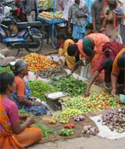 Women in India sell vegetables for a living as well as shop for vegetables for their families. Protecting vegetable crops from diseases enhances both the well being and economic vitality of communities around the world. Photo: Naidu Rayapati
