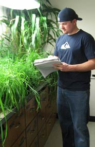 integrated plant sciences