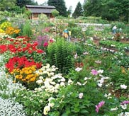 """""""We must cultivate our gardens,"""" Voltaire famously wrote, and there's never been a better time to get involved with the nation's first Master Gardeners Program."""