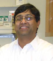 Hanu Pappu is part of a team investigating ways to better protect Palouse legumes from viral epidemics.