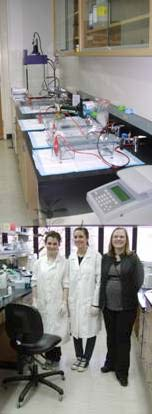 Top: Inside the molecular lab; Bottom: Becca Humphries (left) and Alexandra Montano (middle) with Katie Coats.