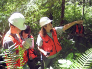 In addition to forestry, students who signed up also learned about team work