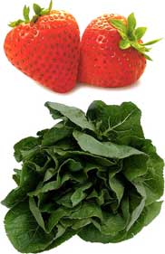 """After attending a Food $ense program, one student exclaimed, """"I learned we can combine strawberries and spinach and it can actually taste good!"""""""