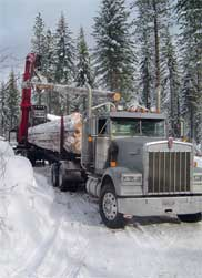 A study indicates that log-truck drivers are among the safest of commercial drivers.