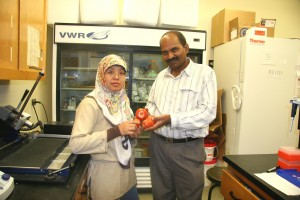 Tri Asmira Damayanti, a researcher at Bogor Agricultural University in Indonesia, and Naidu Rayapati, a plant pathologist at Washington State University's Prosser Irrigated Agriculture Research and Extension Center. Damayanti discovered a previously unknown plant virus in plant samples she brought from her home country.