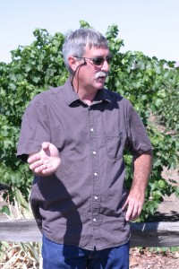 WSU Entomologist Doug Walsh discusses his team's award-winning IPM strategy in a vineyard in Prosser, Wash.