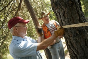 Forest owner Bill Hundley practices his inventory skills using a Merritt Hypsometer. At the field day, participants learn to use tools and can interact with vendors that provide goods and services useful for forest and rangeland management