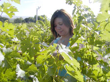 """Extension Viticulturist Mercy Olmstead regards Washington wine-grape growers as """"pioneers,"""" and recently told Voice of the Vine, """"I love talking to growers!"""