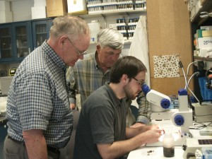 Beekeepers Eric Olsen of Yakima, left, and Tom Hamilton, Namapa, Idaho, look over graduate student Mathew Smart's shoulder at an entomology laboratory at Washington State University. The beekeepers have donated seed money to underwrite research on Colony Collapse Disorder.