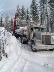 Eleven percent of log truckers surveyed for a new report say loading is the most dangerous part of their work while 89 percent say it is increasing traffic congestion and worsening road conditions. Photo credit: Larry Mason/University of Washington.