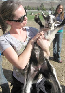 Student Blair van Pelt with baby goat at Monteillet Fromagerie, a goat and sheep cheese making farm.