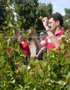 WSU viticulturist Markus Keller in a vineyard with students.