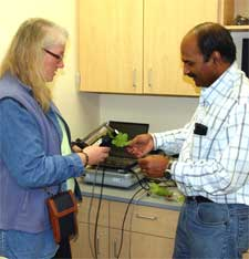 Eileen Perry, assistant director of WSU's Center for Precision Agricultural Systems, and Naidu Rayapati, WSU grape virologist, use a spectral radiometer to measure light reflected from grape leaves.