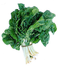 """""""Eat your spinach!"""" might be a more appealing idea to kids if they've grown it themselves."""