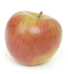 The Washington apple is an icon of excellence around the world.