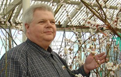 WSU plant pathologist is the director of the Clean Plant Center of the Northwest. Photo: Washington State University.