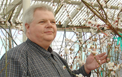WSU plant pathologist is the director of the Clean Plant Center of the Northwest.