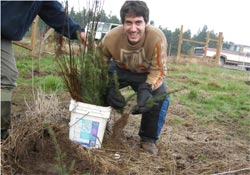 Happy to plant 1,000 trees! Spring Rain Farm and Orchard, Chimacum, Wash.