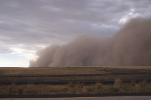 Strong winds can create major dust storms in eastern Washington. One source of blowing dust is from newly harvested potato fields that lack residue and soil structure. In Oct., 2009, for example, one such storm reduced visibility on Interstate 90 between Ritzville and Moses Lake to near-zero, and the freeway was closed for 20 hours.