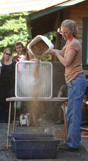 Micaela Colley of Organic Seed Alliance uses a fan to separate denser seeds from less dense chaff