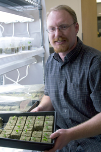 Tyson Koepke sampled the DNA from thousands of cherry plants in order to identify key SNPs.