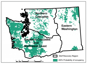 Washington's three gray wolf recovery regions with high quality habitat in green, as modeled by Ben Maletzke. Click image to download high-resolution version.