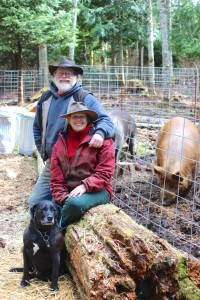 Dan and Barb Cutts with their dog and heritage Tamworth pigs. Photo by Nicole Witham.