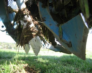 Blades of a rotary spader help protect soil structure. Photo by Doug Collins, WSU.