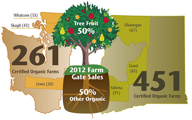 Sources: The 2012 USDA Census of Agriculture: Washington State and County Data; Washington Agriculture by the Numbers by David Granatstein; Current Status of Organic Agriculture in Washington State: 2013 by Elizabeth Kirby and David Granatstein. (Graphic by Gerald Steffen).