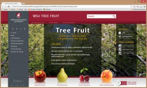 Washington State University's new tree fruit website, launching in March 2015, will be instrumental in communicating information to growers.