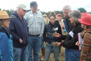 Course participants learn about prairie and pasture species. (Photo by Sylvia Kantor).