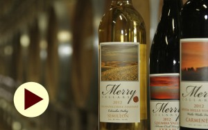 Learn about wine tasting, wine etiquette and how to pair food and wine in a free online presentation by Patrick Merry, owner of Merry Cellars Winery.