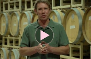 Learn wine basics and tips for pairing food and wine from Patrick Merry of Merry Cellars. (Links to YouTube webinar.)
