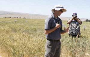 WSU winter wheat breeder Aaron Carter discusses the importance of end use quality to a group of visiting farmers at the Lind Dryland Research Station's annual field day. Lind Station marked its centennial with tours and a special program Thursday, June 11.