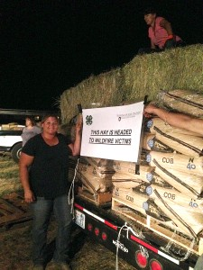 Kate McCloskey, Spokane County 4-H coordinator, delivers farm feed and hay for fire-affected families in Okanogan County. Cattle producers lost forage and feed in the 2015 wildfire. (Photo by Ann Fagerlie/WSU Extension)