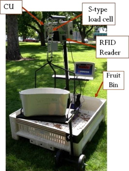 Researchers developed this portable system to collect data on fruit drops in cherry orchards. The system, which includes a digital scale and computer mounted on a cherry bin, can help growers pay pickers by the pound and visualize yields.