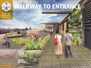 Drawing of the walkway and entrance for the proposed WSU Honey Bee and Pollinator Research Center.
