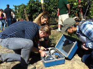 Students in vineyard gathered around a pressure chamber instrument.
