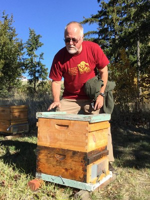 Entomologist Steve Sheppard checks colony health in the WSU Teaching Apiary.