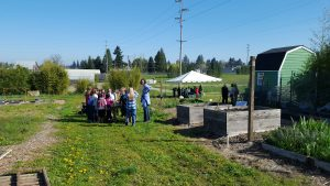 Elementary students from Clark County visit different stations on a tour of Heritage Farm as part of the Farm to Fork program run by WSU Extension.