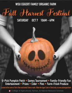 Flyer for Harvest Festival featuring hands holding a painted jack-o-lantern pumpkin