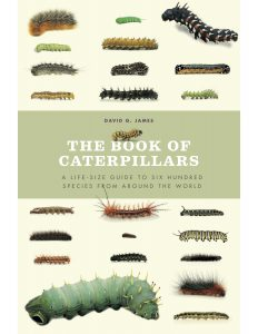 The cover of this book. Several different species of caterpillars spread around the words The Book of Caterpillars.