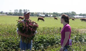 Student researcher Andrea Garfinkel chats with a farm worker in a Netherlands peony field.
