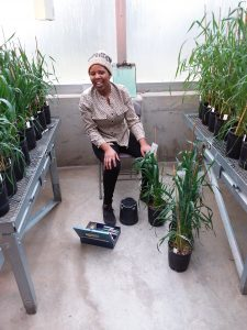 Esther Rugoli sits on a chair in a greenhouse surrounded by plants on tables and on the floor in individual planters.